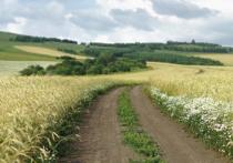 Сельское хозяйство, инвестиции и туризм как драйверы роста Целинного района