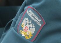 В Алтайском крае на 2 млрд рублей выросла задолженность по налогам