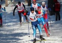 В Завьялово завершилась краевая олимпиада