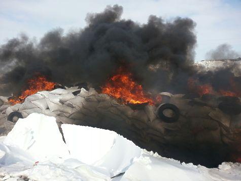 ВАлтайском крае сожгли 800 мешков орехов изсоедененных штатов