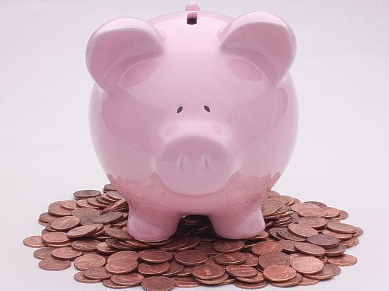 Средняя заработная плата вАлтайском крае вовтором зимнем месяце составила 20 302 рубля