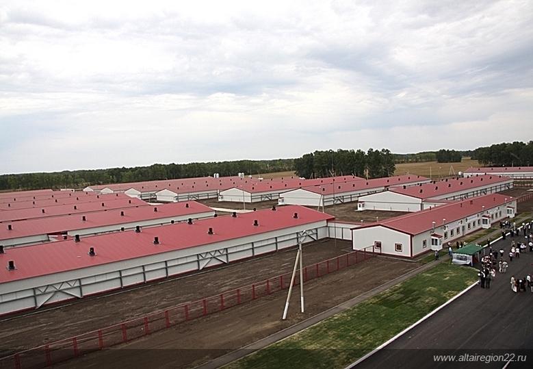 2-ое замесяц предприятие пищевой индустрии вСибири стало банкротом