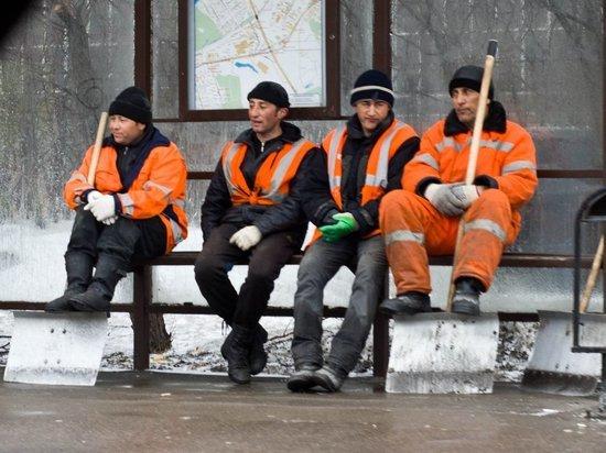 Эксперты «МК на Алтае» — об использовании труда иностранных работников