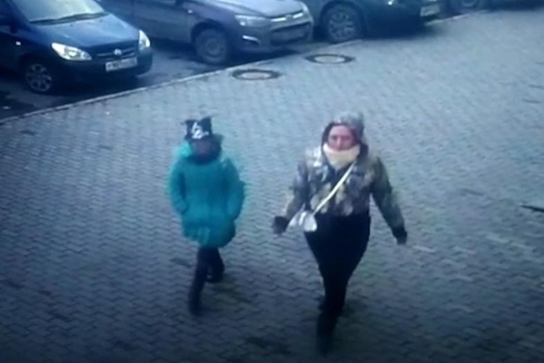 Девочка схомяком: школьница грабит квартиры, предлагая детям поиграть созверьком