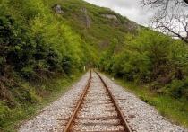 Глава района на Алтае продал железнодорожные пути